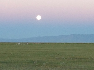 Super Moon from the Laramie airport as I flew out to Connecticut in June.